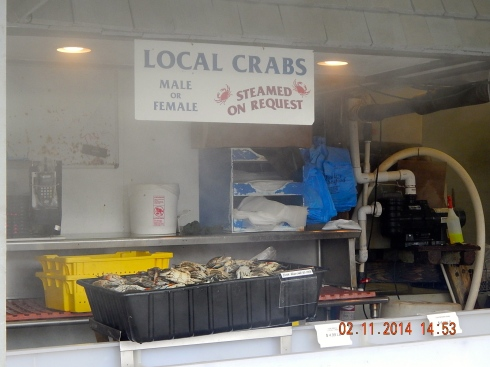 Crabs for sale.