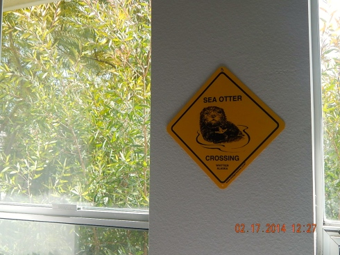 Sea otter crossing sign, given by another colleague.