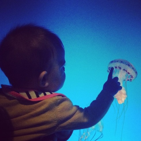 The jellies were her jam.
