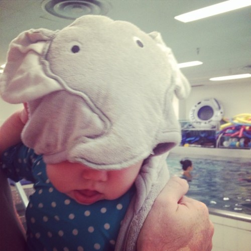 Our elephant/water baby.