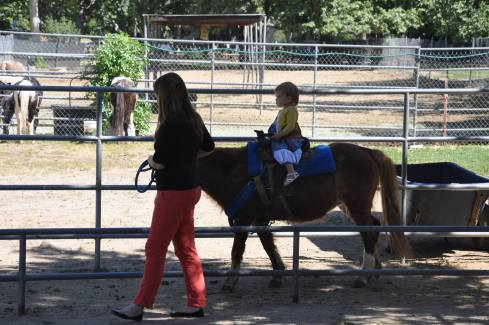 """Margot loved the pony ride. She's been saying """"horse!"""" nonstop ever since."""