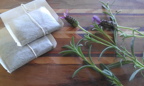Fresh lavender tea.